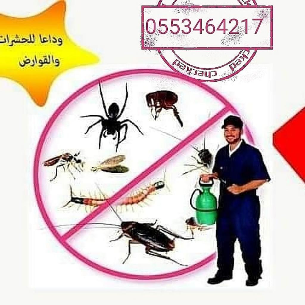 رساله طيبه لخدمات مكافحة حشرات بالمدينة المنورة 0553464217 تنظيف فلل بالمدينه المنوره P_2019ay5922