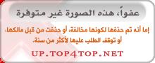 فرح : مواضيع منوعه واخبار نسائيه  | Almohtarif